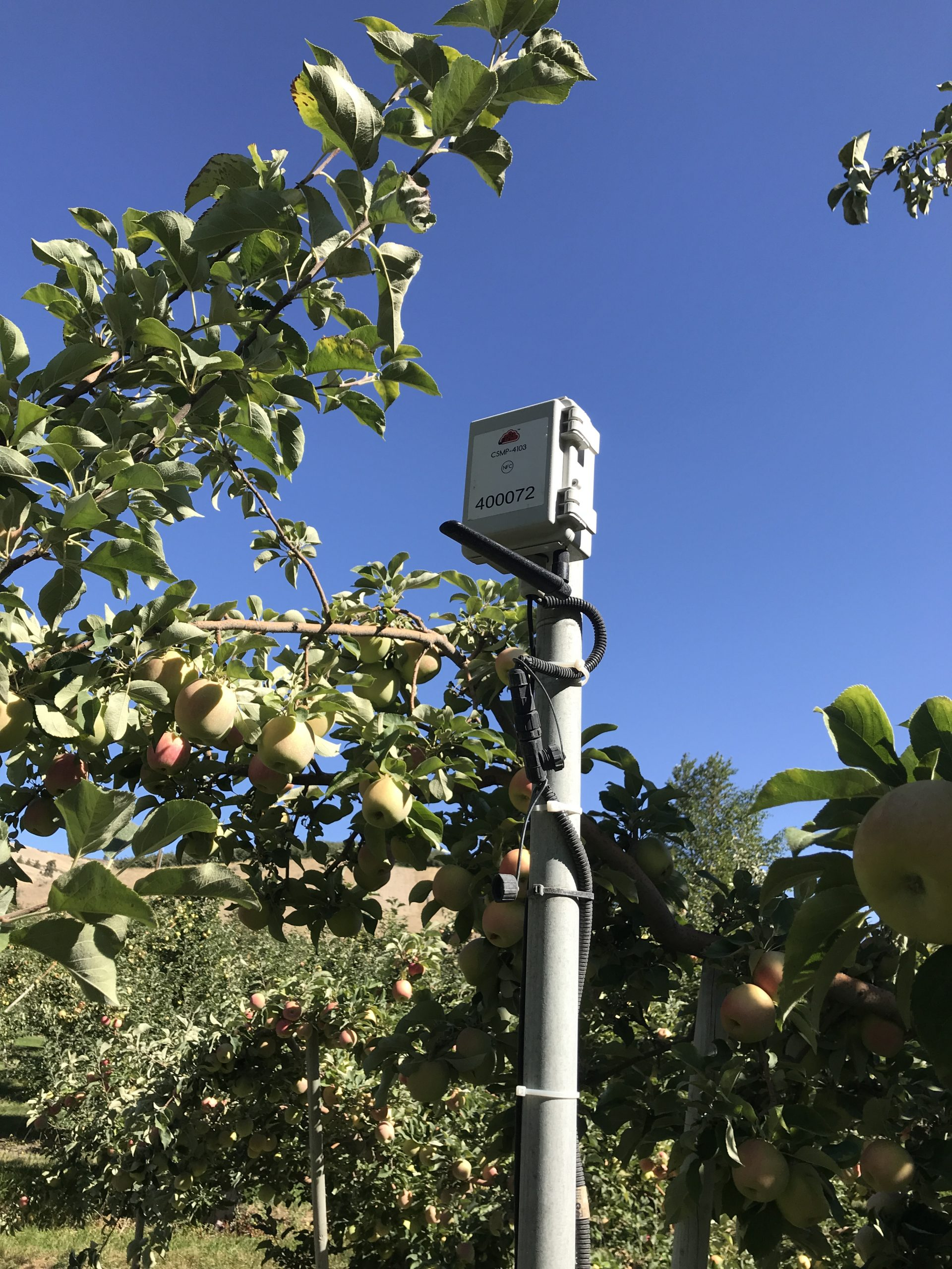 Zenseio Orchard Monitoring